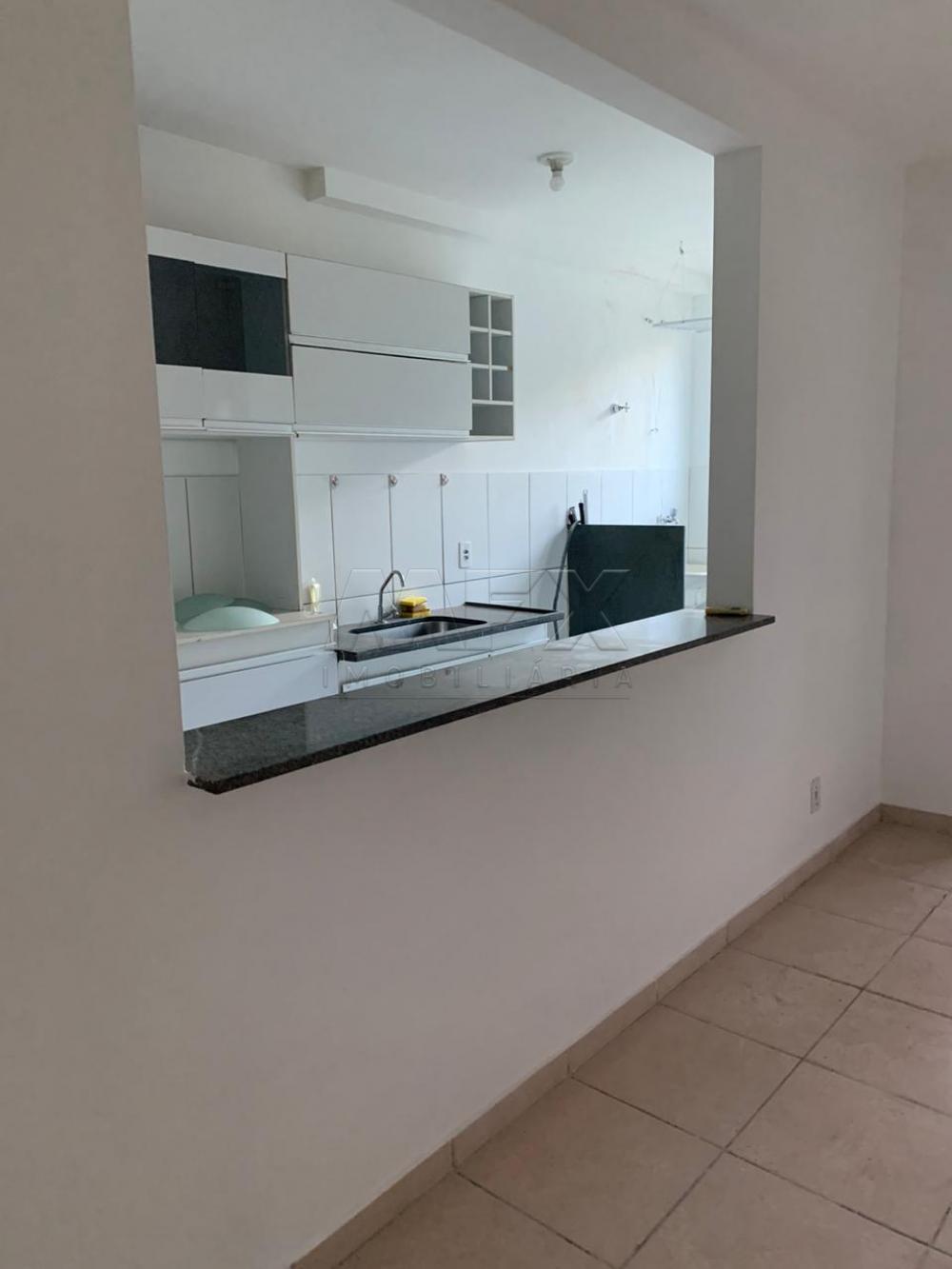 Alugar Apartamento / Padrão em Bauru apenas R$ 850,00 - Foto 3