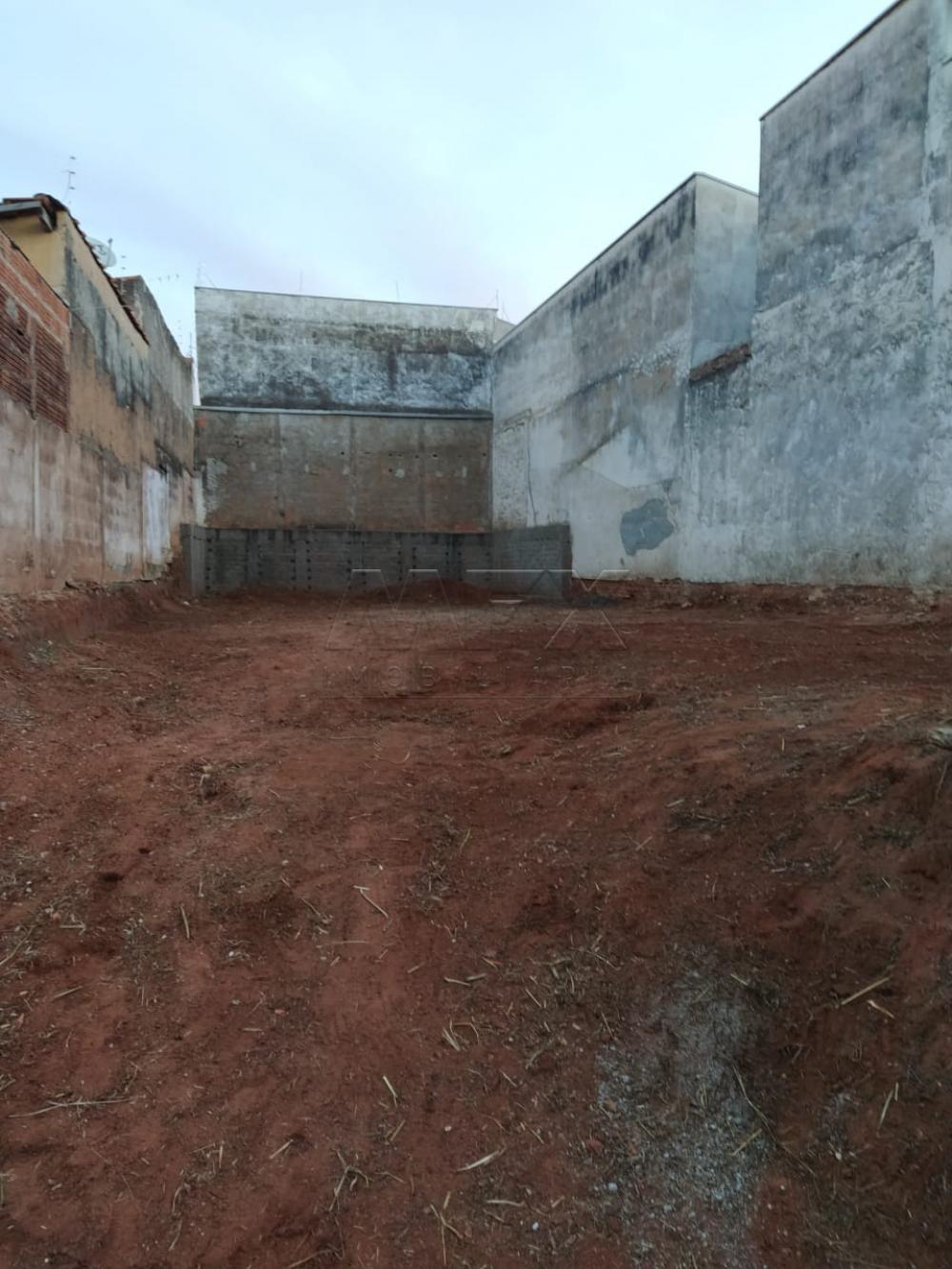 Comprar Terreno / Padrão em Bauru apenas R$ 80.000,00 - Foto 1