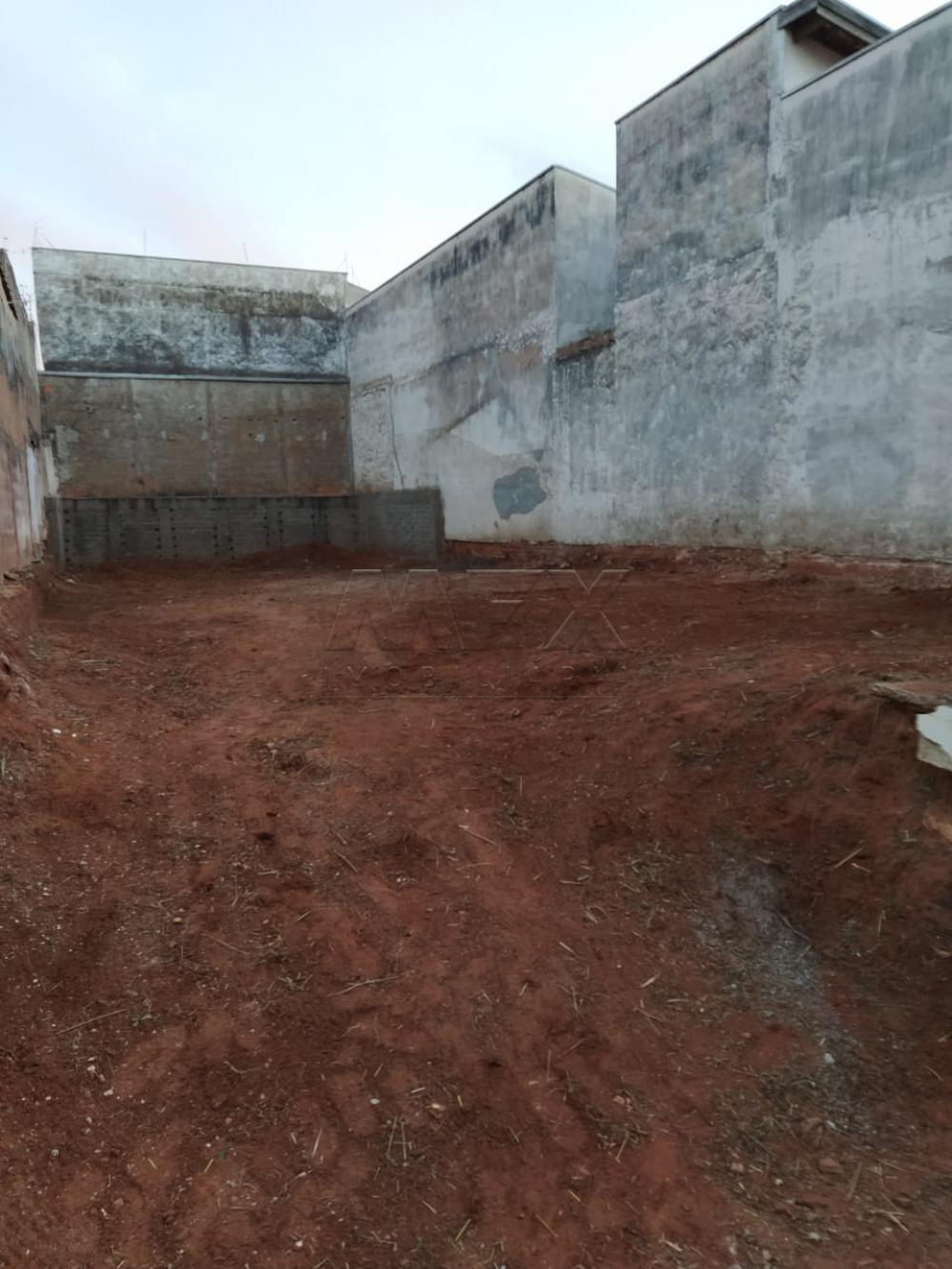Comprar Terreno / Padrão em Bauru apenas R$ 80.000,00 - Foto 2