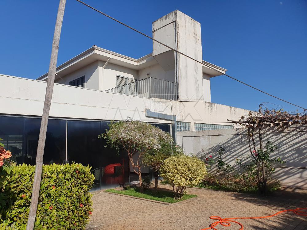 Comprar Casa / Padrão em Bauru apenas R$ 1.300.000,00 - Foto 5