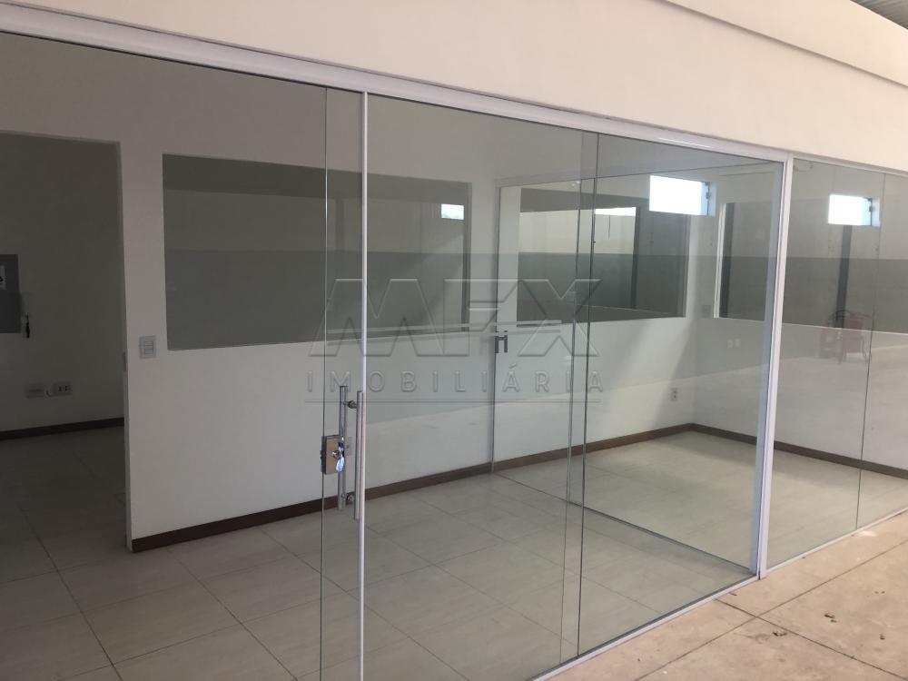 Alugar Comercial / Galpão em Bauru apenas R$ 4.800,00 - Foto 2