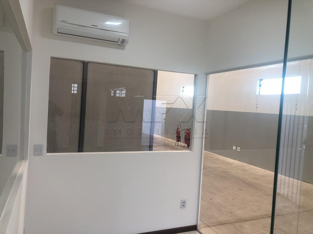 Alugar Comercial / Galpão em Bauru apenas R$ 4.800,00 - Foto 6
