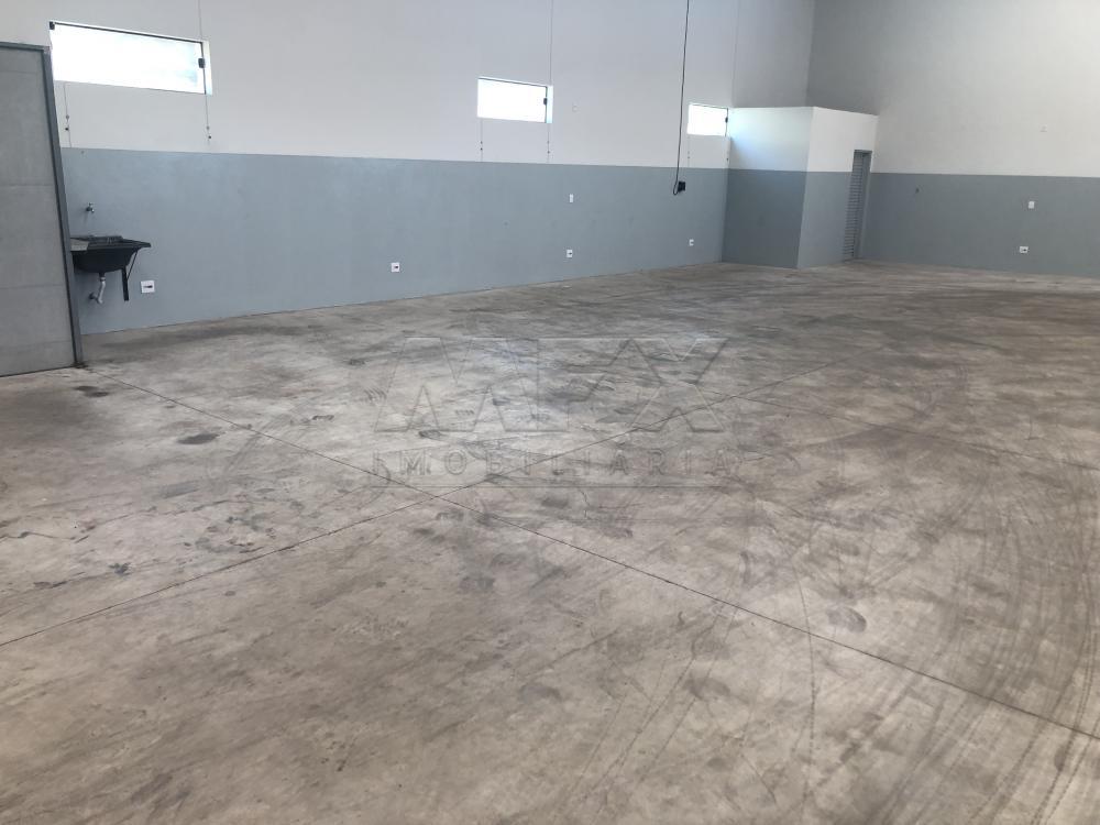 Alugar Comercial / Galpão em Bauru apenas R$ 4.800,00 - Foto 12