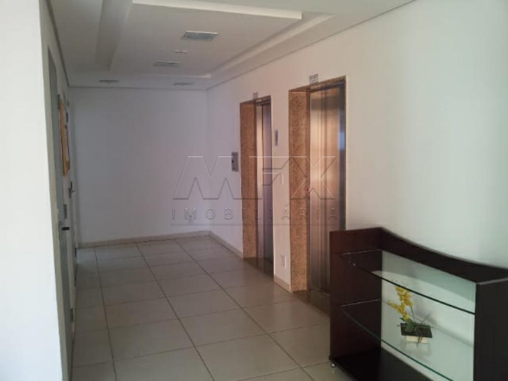 Alugar Apartamento / Padrão em Bauru apenas R$ 750,00 - Foto 13