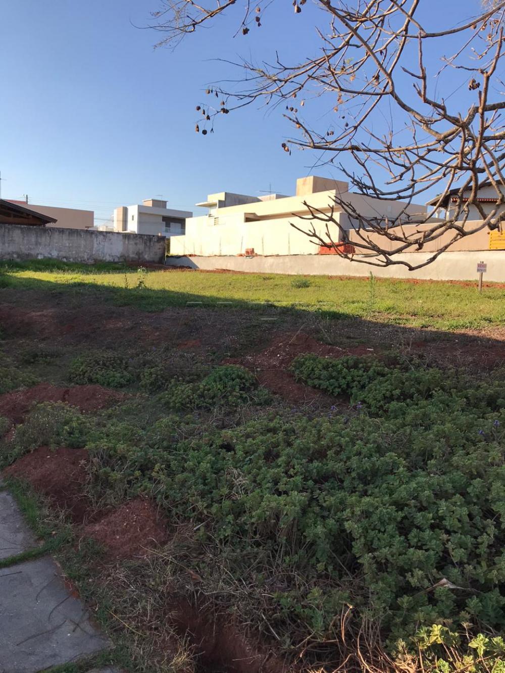 Comprar Terreno / Condomínio em Bauru apenas R$ 190.000,00 - Foto 1