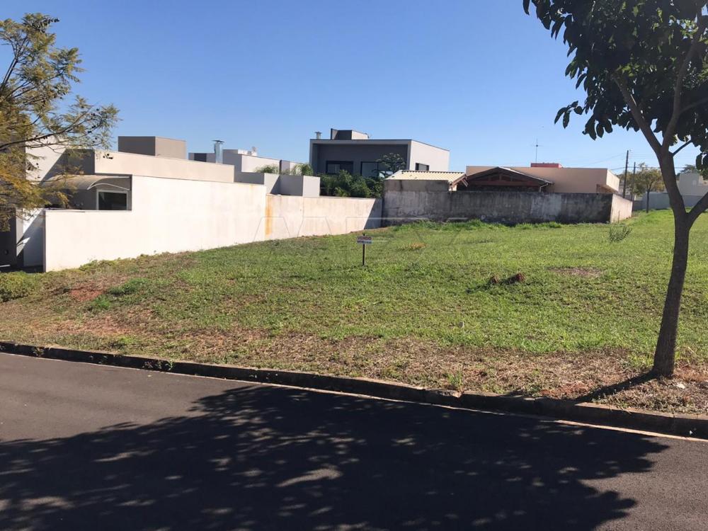 Comprar Terreno / Condomínio em Bauru apenas R$ 190.000,00 - Foto 2
