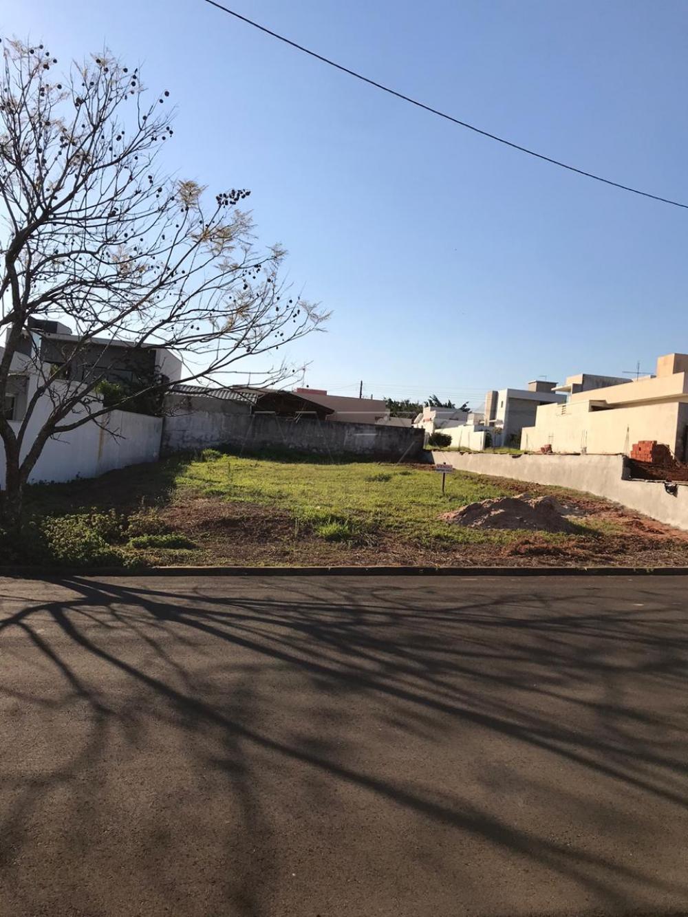 Comprar Terreno / Condomínio em Bauru apenas R$ 190.000,00 - Foto 3