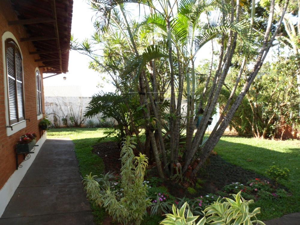 Comprar Casa / Padrão em Agudos apenas R$ 1.200.000,00 - Foto 3