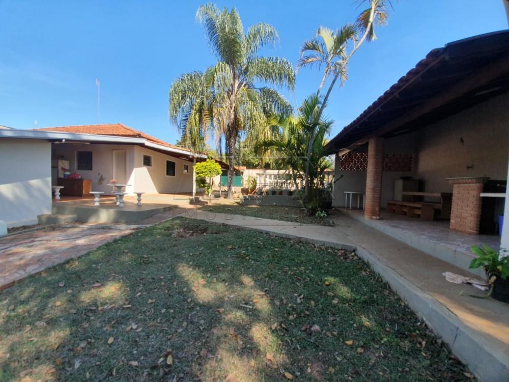 Comprar Casa / Padrão em Arealva apenas R$ 350.000,00 - Foto 4