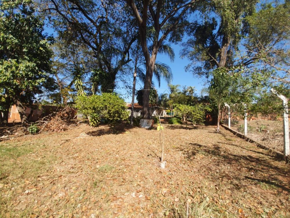 Comprar Casa / Padrão em Arealva apenas R$ 350.000,00 - Foto 13