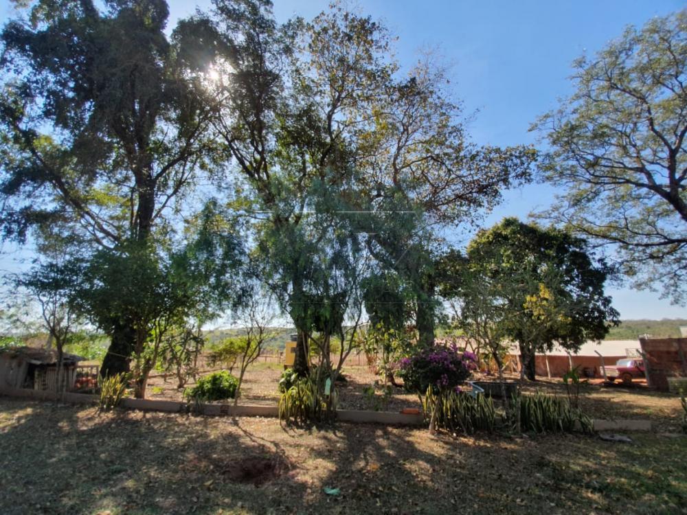 Comprar Casa / Padrão em Arealva apenas R$ 350.000,00 - Foto 20