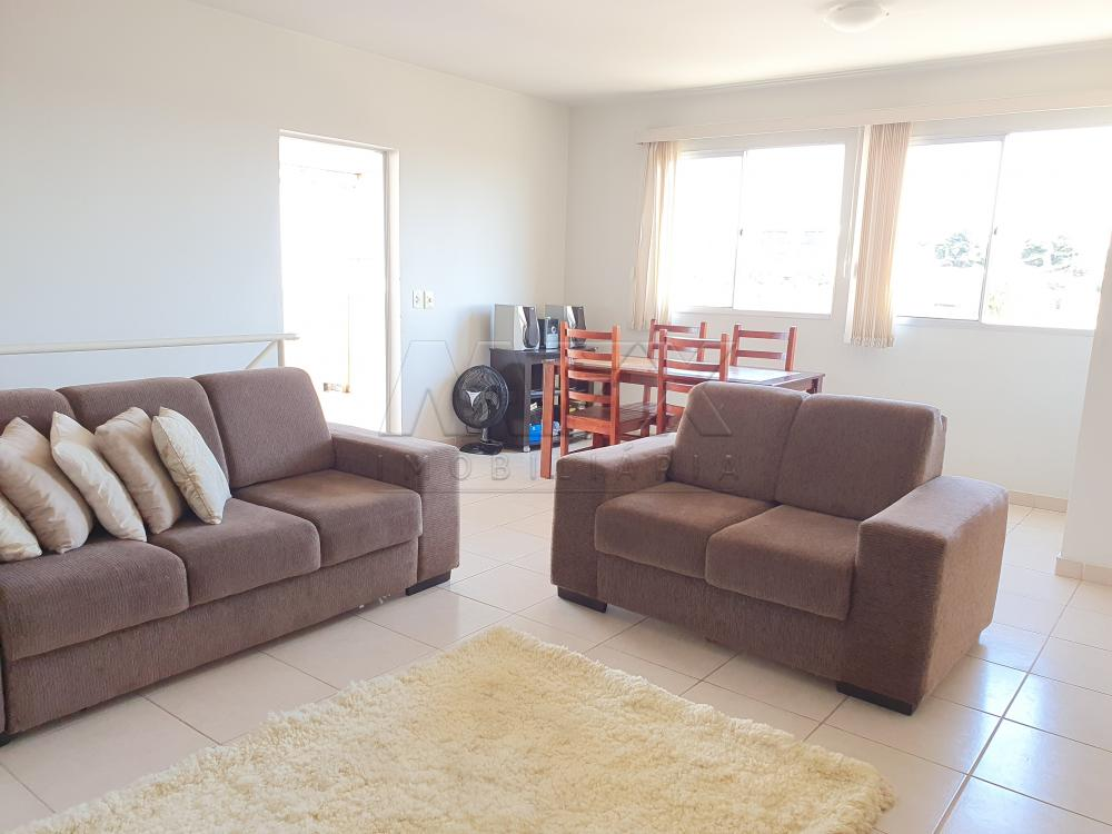 Alugar Apartamento / Cobertura em Bauru apenas R$ 1.300,00 - Foto 7