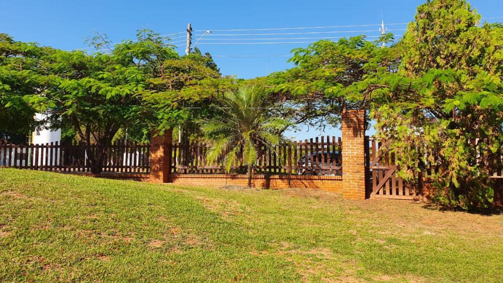 Alugar Casa / Condomínio em Piratininga R$ 2.900,00 - Foto 4