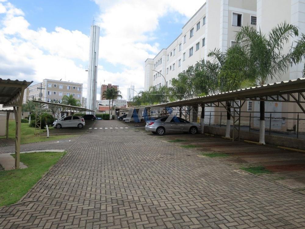 Alugar Apartamento / Padrão em Bauru R$ 780,00 - Foto 11