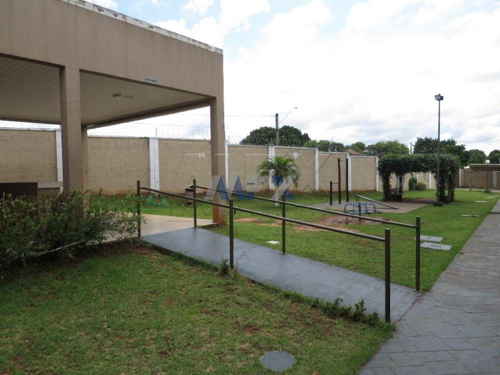 Alugar Apartamento / Padrão em Bauru R$ 780,00 - Foto 12