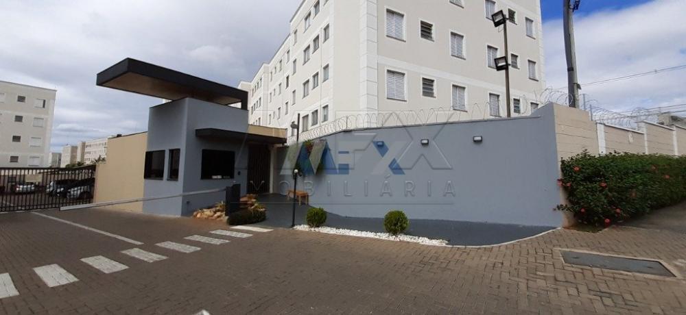 Alugar Apartamento / Padrão em Bauru R$ 780,00 - Foto 14