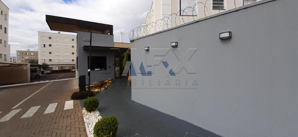 Alugar Apartamento / Padrão em Bauru R$ 780,00 - Foto 15