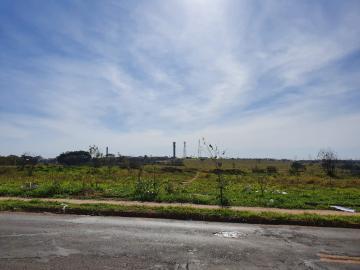 Bauru Distrito Industrial Claudio Guedes Misquiati Area Venda R$8.200.000,00  Area do terreno 54403.00m2