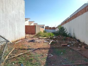 Terreno / Padrão em Bauru , Comprar por R$135.000,00