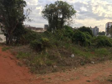 Bauru Vila Aviacao Terreno Locacao R$ 3.000,00  Area do terreno 390.00m2