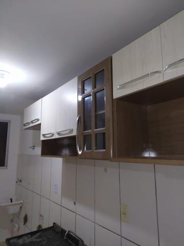 Alugar Apartamento / Padrão em Bauru. apenas R$ 135.000,00