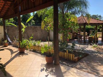 Alugar Casa / Padrão em Bauru. apenas R$ 290.000,00