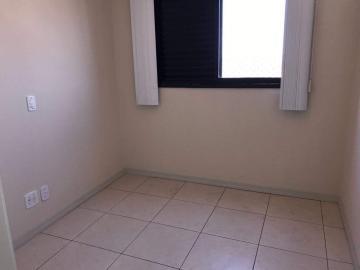 Alugar Apartamento / Duplex em Bauru R$ 1.500,00 - Foto 4