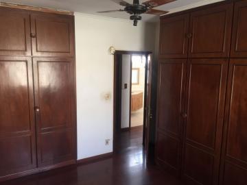 Alugar Comercial / Ponto Comercial em Bauru R$ 4.000,00 - Foto 13